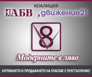ABV-D21_300x250