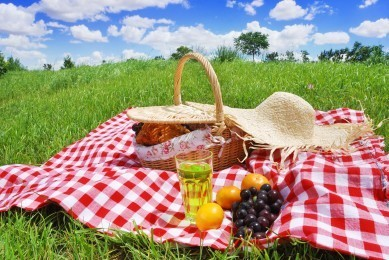 picnic1-389x260