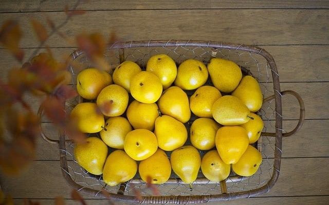 pear-1182635_640