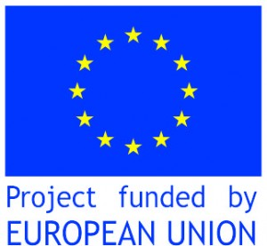 blue and yellow EU logo-1